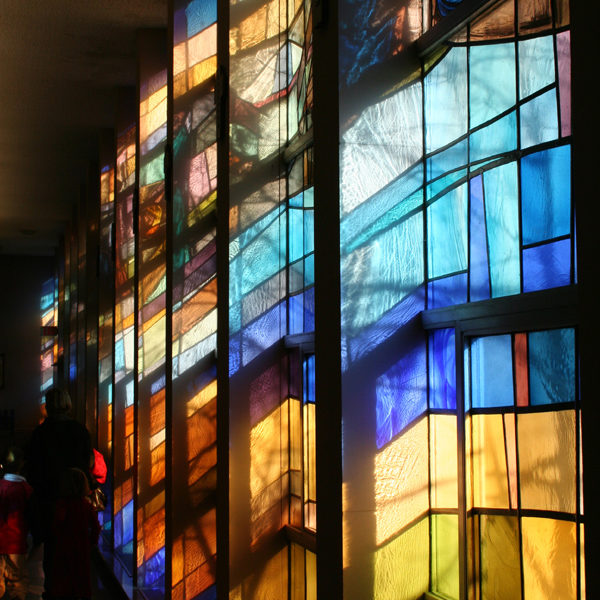 12 vetrate navata